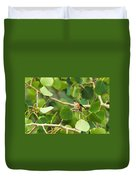 Hummingbird In Tree Duvet Cover