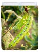 Hummingbird Moth Caterpillar Duvet Cover