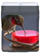 Hummingbird On Feeder Duvet Cover