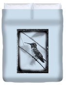 Hummingbird With Old-fashioned Frame 1 Duvet Cover