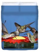 Hummingbirds At Feeder Duvet Cover