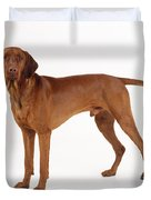 Hungarian Vizsla Dog Duvet Cover