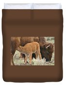 Hungry Baby Bison Duvet Cover