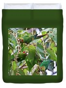 Hungry Chiriqui Conures Duvet Cover