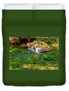 Hungry Willet Duvet Cover