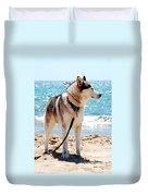 Husky On The Beach Duvet Cover