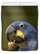 Hyacinth Macaw Cracking Piassava Palm Duvet Cover