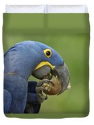 Hyacinth Macaw Habitat Eating Piassava Duvet Cover