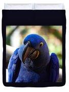 Hyacinth Macaw Duvet Cover