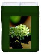 Hydrangea 4 Duvet Cover