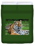 I Peek When I Count Playing Hide N Seek At The Buffalo Zoo Duvet Cover