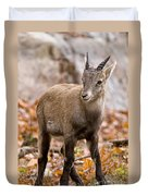Ibex Pictures 10 Duvet Cover