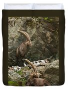 Ibex Pictures 112 Duvet Cover