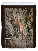 Ibex Pictures 151 Duvet Cover