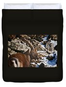 Ibex Pictures 160 Duvet Cover