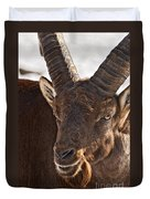 Ibex Pictures 169 Duvet Cover