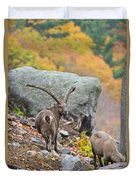 Ibex Pictures 174 Duvet Cover