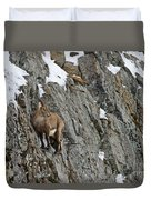 Ibex Pictures 183 Duvet Cover
