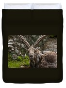 Ibex Pictures 190 Duvet Cover