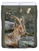 Ibex Pictures 38 Duvet Cover