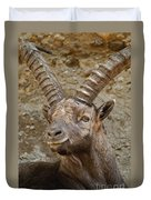 Ibex Pictures 40 Duvet Cover