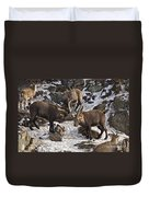 Ibex Pictures 83 Duvet Cover