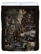 Ibex Pictures 86 Duvet Cover