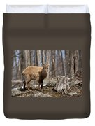 Ibex Pictures 92 Duvet Cover