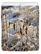 Ice Coated Bullrushes Duvet Cover