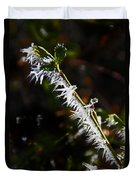 Ice Crystals In Morning Sun Duvet Cover