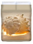 Illumination Series Sea Shells 17 Duvet Cover