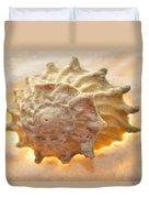 Illumination Series Sea Shells 20 Duvet Cover