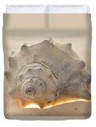 Illumination Series Sea Shells 7 Duvet Cover