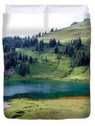 Image Lake  Duvet Cover