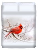 Img_2559-8 - Northern Cardinal Duvet Cover