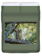Immature Great Horned Owl Duvet Cover