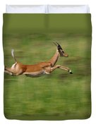 Impala  Running And Leaping Duvet Cover