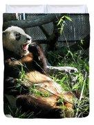In Need Of More Sleep. Er Shun Giant Panda Series. Toronto Zoo Duvet Cover