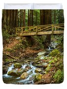 In The Forest - Limekiln State Park In California Duvet Cover