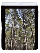 In The Forest Duvet Cover