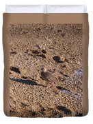 In The Stone Surf Gravel Cape May Nj Duvet Cover