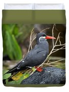 Inca Tern Duvet Cover