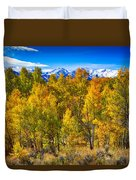 Independence Pass Autumn Colors Duvet Cover