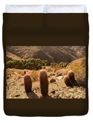 Indian Canyon Duvet Cover