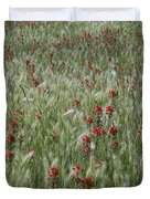 Indian Paintbrush And Foxtail Barley Duvet Cover