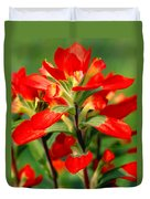 Indian Paintbrush I I Duvet Cover
