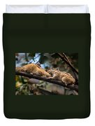 Indian Palm Squirrel Duvet Cover