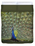 Indian Peafowl Male Displaying Duvet Cover