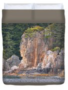 Indian Rock  Duvet Cover