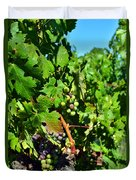 Inglenook Vineyard -10 Duvet Cover